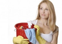 house_cleaner.261202833_std